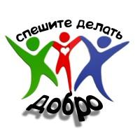 25029046